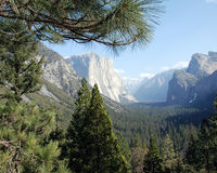 El Capitan from Tunnel View Royalty Free Stock Photo