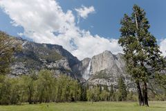El Capitan and waterfall in Yosemite. National park beautiful landscape stock photography