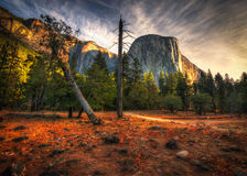 El Capitan Yosemite Stock Photo