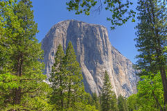 El Capitan Yosemite National Park Stock Image
