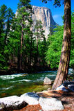 El Capitan, Yosemite National park Royalty Free Stock Photography