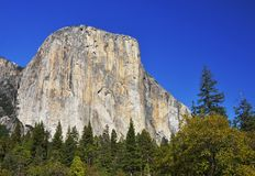 El Capitan, Yosemite National Park, California Royalty Free Stock Images