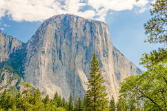 El Capitan, Yosemite National Park, California Stock Images