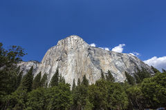 El Capitan, Yosemite national park, California, usa Royalty Free Stock Photography