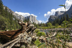 El Capitan, Yosemite national park, California, usa Royalty Free Stock Image