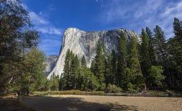 El Capitan, Yosemite national park, California, usa. World famous rock climbing wall of El Capitan, Yosemite national park, California, usa Royalty Free Stock Photos