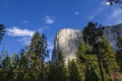 El Capitan, Yosemite national park, California, usa. World famous rock climbing wall of El Capitan, Yosemite national park, California, usa Royalty Free Stock Photography