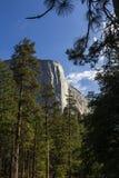 El Capitan, Yosemite national park, California, usa. World famous rock climbing wall of El Capitan, Yosemite national park, California, usa Stock Photo