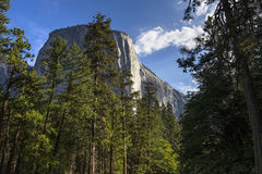 El Capitan, Yosemite national park, California, usa Royalty Free Stock Photo