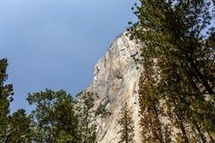 El Capitan, Yosemite national park, California, usa. World famous rock climbing wall of El Capitan, Yosemite national park, California, usa Stock Image