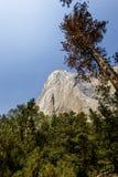 El Capitan, Yosemite national park, California, usa. World famous rock climbing wall of El Capitan, Yosemite national park, California, usa Royalty Free Stock Images