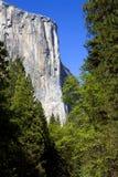 El Capitan, Yosemite National Park, California Royalty Free Stock Image