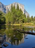 El Capitan; Yosemite National Park Stock Image