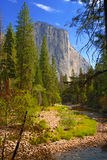 El Capitan, Yosemite National Park, Sierra Nevada Mountains, California Stock Photography