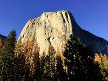 El Capitan. In Yosemite national park standing in its glory stock photography