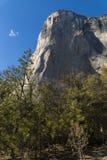 El Capitan, Yosemite National park USA royalty free stock image