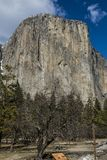 El Capitan, Yosemite National park USA royalty free stock photos