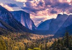 EL Capitan, Yosemite Nationalpark stockfoto