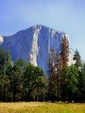 El Capitan, Yosemite park narodowy obrazy stock