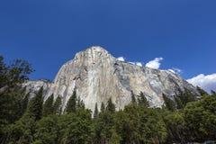 El Capitan, Yosemite park narodowy, Kalifornia, usa Fotografia Royalty Free