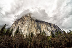 El capitan dares you. Royalty Free Stock Photo