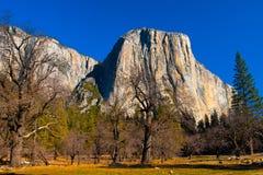 The El Captain Rock in Yosemite National Park,California. United States Stock Image