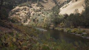 El cardán abajo tiró del río merced en d3ia Foto de archivo libre de regalías