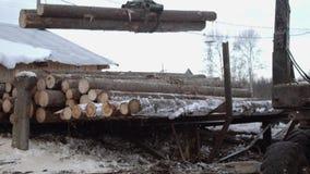 El cargador de la garra del camión descarga los registros de madera del camión pesado en la fábrica de la artesanía en madera almacen de metraje de vídeo