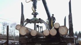 El cargador de la garra del camión descarga los registros de madera del camión pesado en la fábrica de la serrería almacen de video