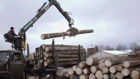 El cargador de la garra del camión descarga los registros de madera del camión pesado en la instalación de la serrería almacen de video