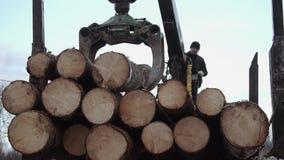 El cargador de la garra de la grúa descarga los registros de madera del camión pesado en la fábrica de la serrería almacen de metraje de vídeo