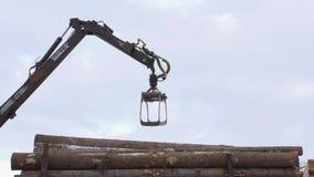 El cargador de la garra de la grúa descarga registros de la madera del camión pesado en la instalación de la serrería metrajes