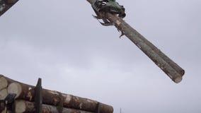 El cargador mecánico de la garra descarga los registros de madera del camión pesado en la instalación de la serrería metrajes