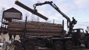 El cargador mecánico de la garra descarga registros de la madera de construcción del camión pesado en la fábrica de la serrería almacen de metraje de vídeo