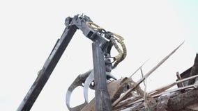 El cargador pesado de la garra descarga los pedazos de la madera del vehículo pesado en la instalación de la serrería metrajes