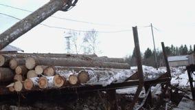 El cargador pesado de la garra descarga los registros de madera del camión pesado en la fábrica de la artesanía en madera metrajes