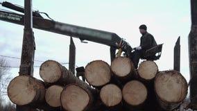 El cargador pesado de la garra descarga los registros de madera del camión pesado en la fábrica de la serrería metrajes