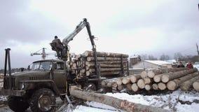 El cargador pesado de la garra descarga los registros de madera del camión pesado en la instalación de la serrería almacen de video