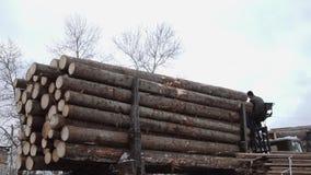 El cargador pesado de la garra descarga los registros de madera del camión pesado en la producción de la serrería almacen de video