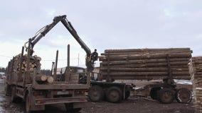 El cargador pesado de la garra descarga registros de la madera del camión pesado en la instalación de la serrería almacen de metraje de vídeo