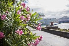 El Caribe que cruza Imagen de archivo