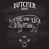 El carnicero corta el esquema del cerdo Imágenes de archivo libres de regalías