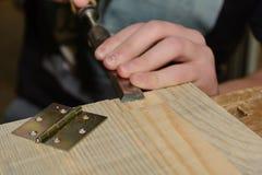 El carpintero trabaja con los aguijones fotos de archivo