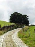 El carril estrecho del país de la bobina con las paredes de piedra cobbles Imagen de archivo libre de regalías