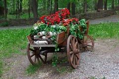 El carro con el geranio rojo del escarlata florece en parque Fotos de archivo libres de regalías