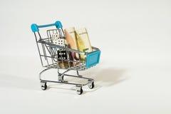 El carro de la compra con las cuentas, las monedas y blanco y negro euro corta en cuadritos Imagen de archivo