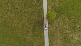 El carro traído por caballo monta lentamente en un pequeño camino Alrededor de la naturaleza Silueta del hombre de negocios Cower almacen de metraje de vídeo