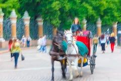 El carro y los turistas del caballo acercan a la cerca Summer Fotografía de archivo libre de regalías