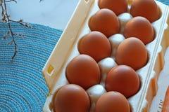 El cartón de frech eggs en primer y top-vista imagenes de archivo