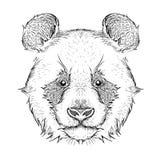 El cartel con el retrato de la panda de la imagen Imagenes de archivo
